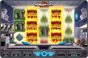 GAME-LIBRARY-WILD-PENGUIN-CITY